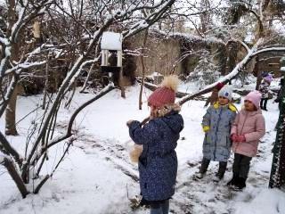 """Информация по проведению городской акции """"Помогите птицам!"""""""